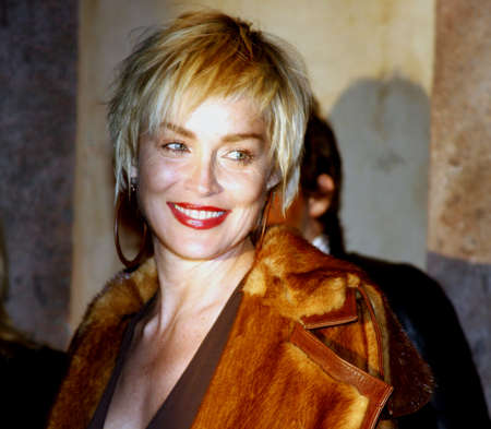 bel air: Sharon Stone at the Scandinavian Style Mansion held at the Private Residence in Bel Air, USA on December 1, 2007. Editorial