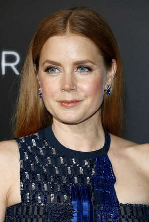 adams: Amy Adams at the Los Angeles premiere of Arrival held at the Regency Village Theater in Westwood, USA on November 6, 2016.