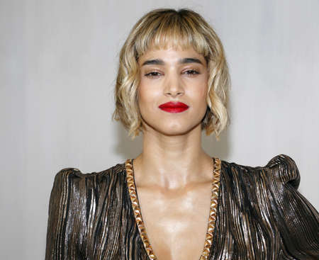 Sofia Boutella at the Hammer Museum Gala In The Garden held at the Hammer Museum in Westwood, USA on October 14, 2017.