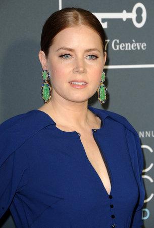 Amy Adams at the 24th Annual Critics Choice Awards held at the Barker Hangar in Santa Monica, USA on January 13, 2019.