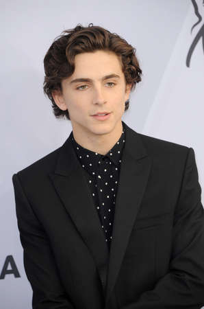Timothee Chalamet at the 25th Annual Screen Actors Guild Awards held at the Shrine Auditorium in Los Angeles, USA on January 27, 2019. 新闻类图片