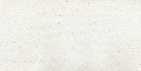 Empty sheet of paper with small yellow grains.