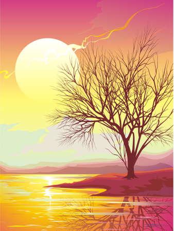 Sunset Illustration