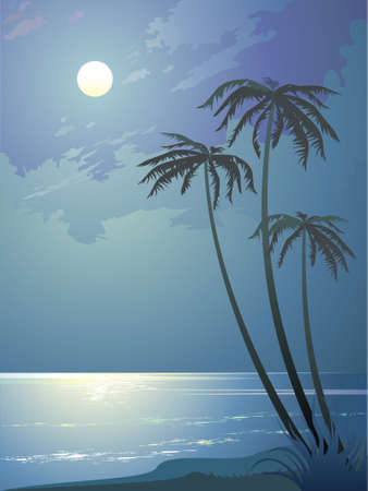 Tropical night Stock Vector - 5414474