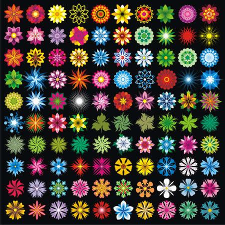 100 flowers Illustration