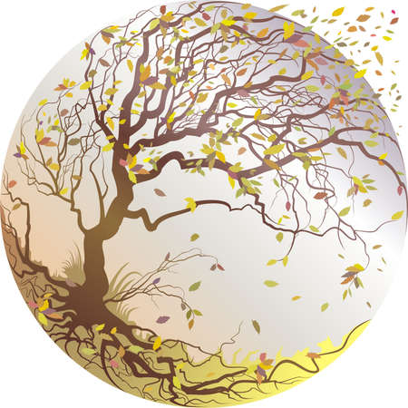 defoliation: Fall. Vector illustration with tree and flying leafs
