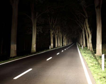 Asphalt road at night along the trees