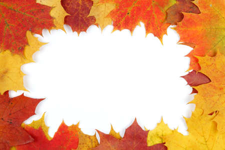 Frame composed of colorful autumn leaves Stock Photo - 15685993