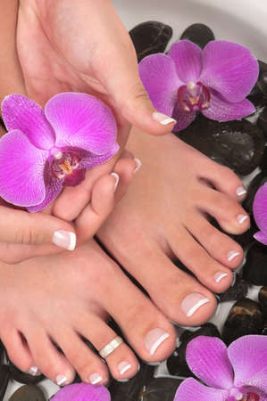 nail salon: Pedicured feet and orchids