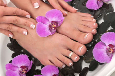 manicure and pedicure: Pedicured feet and orchids