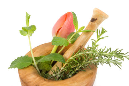 Healing herbs and tulip on white background (handcarved olive tree mortar and pestle)
