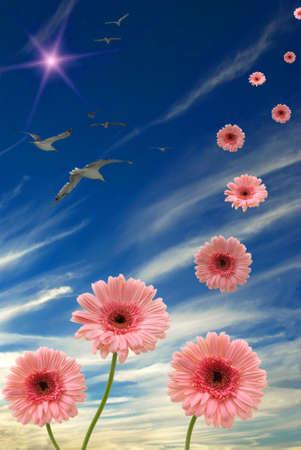Daisies, sun, birds, and blue sky