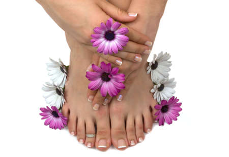 Beautiful pedicured feet and manicured hands with colorful spring daisies in a spa Banque d'images