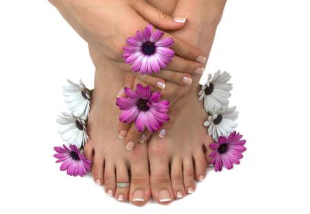 Prachtige pedicured voeten en gemanicuurde handen met kleurrijke lente madeliefjes in een kuuroord