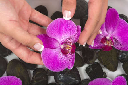 Manicured hands with therapeutic pebbles, herbal water and beautiful orchids Banque d'images