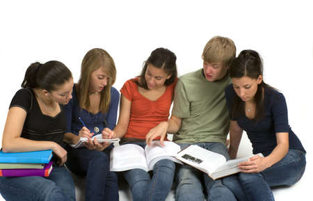 Diverse group of students studying Stock Photo - 3387705