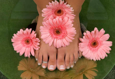 Pedicured feet and pink daisies