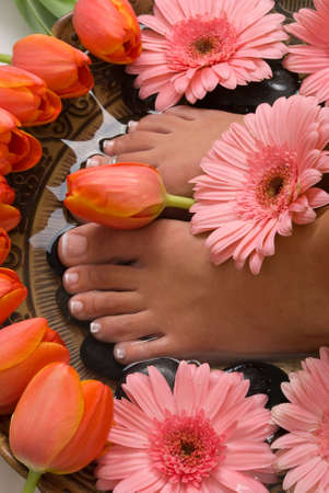 Spa treatment with beautiful elegant tulips and gerberas