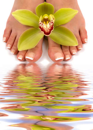 Pedicured feet with beautiful orchid and water reflection Banque d'images