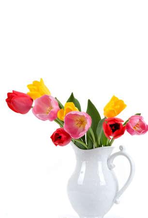 Beautiful colorful tulips