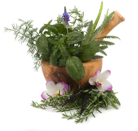 Relaxing herbs for aromatherapy