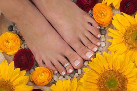 Spa treatment ( pedicure) photo