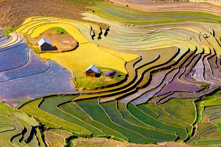 Prachtige terrasvormige rijstvelden in de provincie Lao Cai in Vietnam Stockfoto