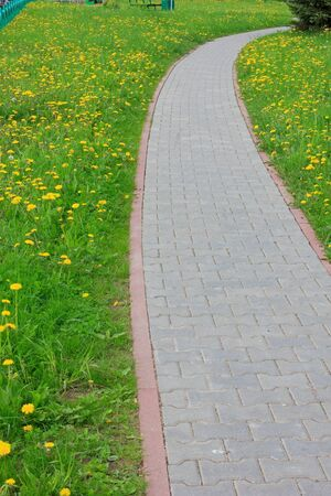 Path with bend on spring meadow  photo