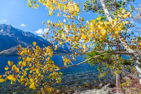 teton: grand teton national park Stock Photo