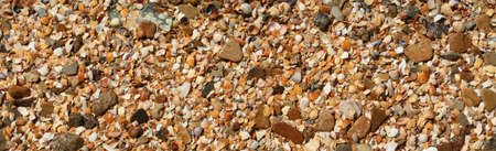 seacoast: The fragment of  beach with colored shells,pebbles and other object.