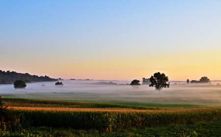 Misty morning in Regoly, rural Hungary in the summer Imagens