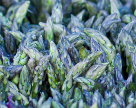 Asparagus bunch on vegetable stand at Farmers Market, Barnsdall Park photo