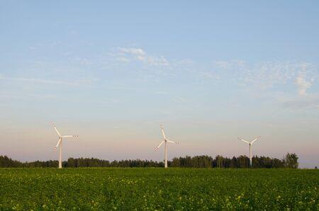 Three windmills in a field Stock Photo - 10572459