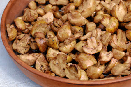 Bowl of fried champignons