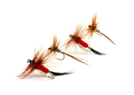 Four small trout flies  Stock Photo