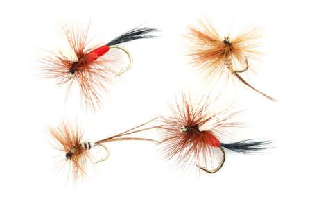 Four trout fishing flies  photo