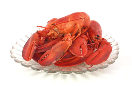 Fresh cooked lobsters  photo