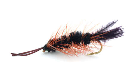 Bug shaped trout fly
