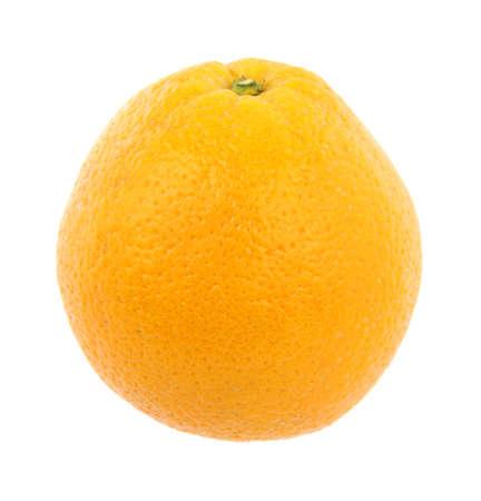 Large naval orange photo