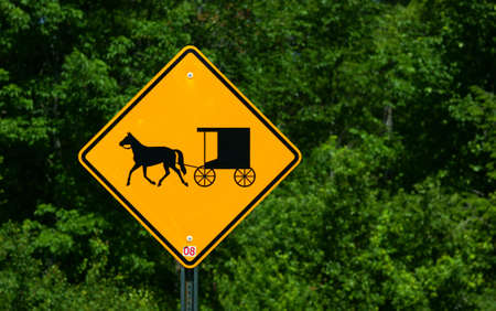 amish buggy: Rural horse and buggy sign