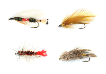 Four different colorful trout flies against a white background.  photo