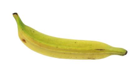 plantain: Plantain banana