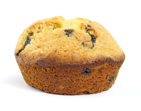 Single blueberry muffin photo