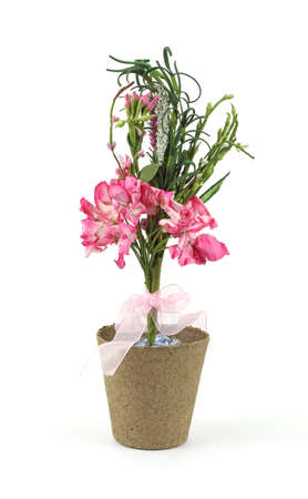 A pink paper flower floral display in a peat pot on a white background. Reklamní fotografie