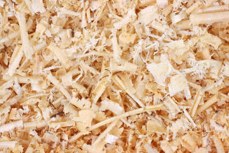 shavings: A very close view of the texture of wood shavings. Stock Photo