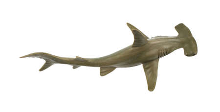 A toy hammerhead shark on a white background. Banco de Imagens