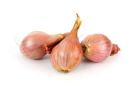 A group of fresh shallots on a white background.