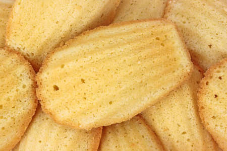 Close view of a group of freshly baked madeleines. photo