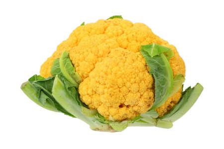 overly: Single overly ripe orange cauliflower on a white background.