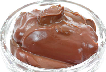 A serving of creamy chocolate pudding in a dessert dish. Stock Photo - 9294553